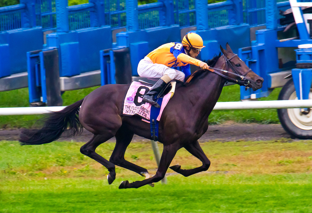 """Stacelita"" with sure to be elected into the riders Hall of Fame jockey, Ramon Dominguez, aboard, winning the Flower Bowl in 2011."