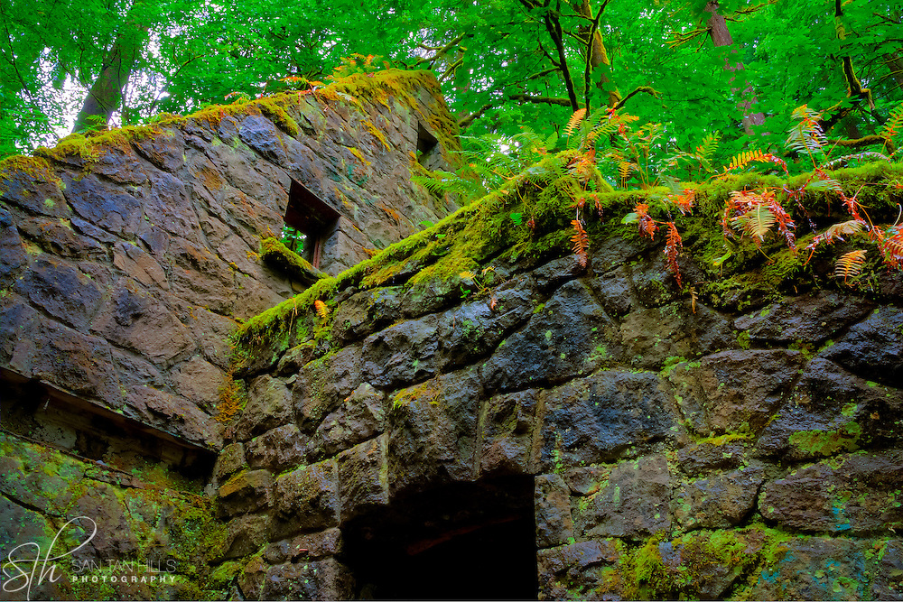 """View of """"the Witch's Castle,"""" a structure actually built to serve as a trail side public restroom in the 1930's - Lower Macleay Park, Portland, OR"""