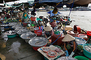 A fish markets in the town of Sa Dec  along the Mekong River in Vietnam<br /> <br />  photo by Dennis Brack