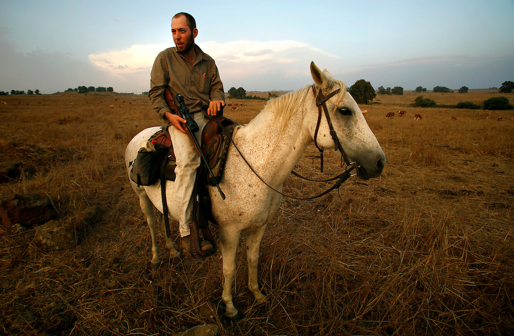 Yair Negev 24 riding his hors in the pasture with his sniper rifle, looking for wolfs that predator the young calves. Moshav Yehonatan in the Golan height, Israel. Sunday September, 30 2007