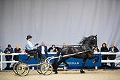 Horses2fly KFPS Sportcompetitie Tuigen