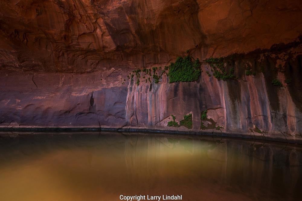 Neon Canyon, Grand Staircase-Escalante National Monument; Utah