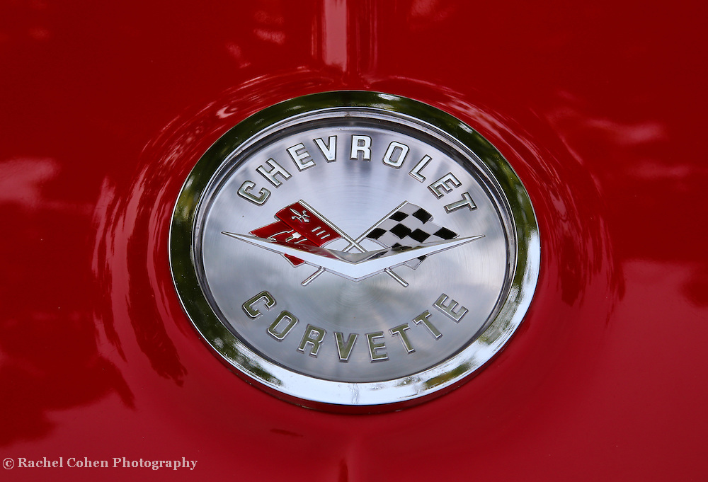 &quot;61 Chevy Corvette&quot;<br /> <br /> The beautiful 1961 Chevrolet Corvette rear logo!!<br /> <br /> Cars and their Details by Rachel Cohen