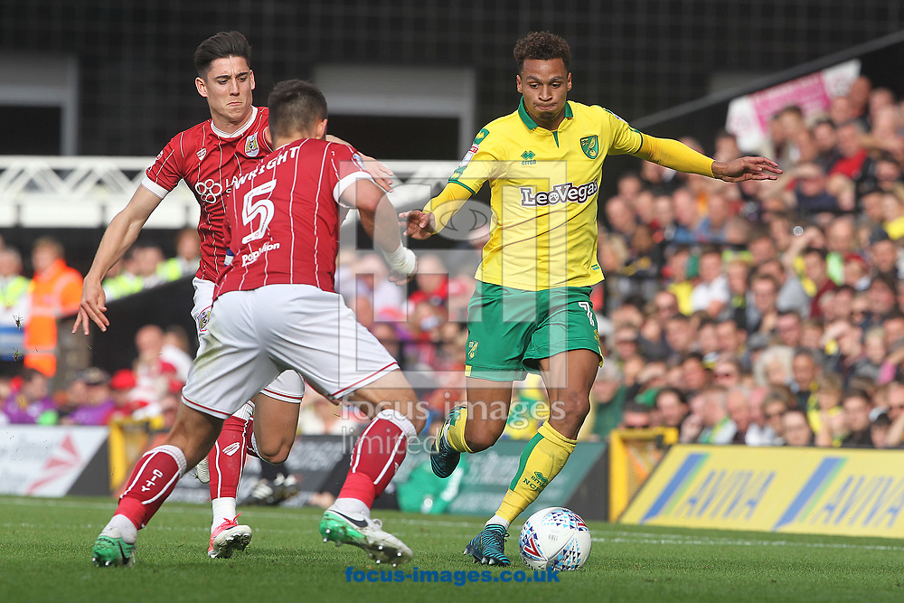 Bailey Wright of Bristol City and Josh Murphy of Norwich in action during the Sky Bet Championship match at Carrow Road, Norwich<br /> Picture by Paul Chesterton/Focus Images Ltd +44 7904 640267<br /> 23/09/2017