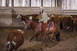 April 29 2017 - Minshall Farm Cutting 1, held at Minshall Farms, Hillsburgh Ontario. The event was put on by the Ontario Cutting Horse Association. Riding in the 1,000 Amateur<br />  Class is Alan Garmis on Qb Tilly Highbrow  Cd owned by the rider.