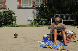 ".---.Ridgewood, NJ /  Sun, Aug 30, 2009:.Graydon Pool, Ridgewood, NJ.Suzanne Kelly.Marcia Ringel.-the 2 organizers who are trying to save the pool .-scenes of people having fun at the town pool showing how unique this town pool is since it looks more like a natural lake with sand beach, trees etc...Doing towns for Thursday next week from Ridgewood, NJ/ on fight over  beloved local park and swimming pool:..Here's summary: .Have you ever seen Graydon, the 2.5-acre pool in the middle of town? It's really a manmade, springfed pond, not a pool, surrounded by  sandy beaches, lawns, oak and cottonwood shade trees, with white wooden lifeguard stands, rafts, diving boards, etc. For decades it's been the village's jewel, the one distinctive thing everybody talks about..Now a group wants to plow it under and convert it to a.country-club-style concrete complex with waterpark features. No more pond, no more sand. They think the existing pond is too natural -- and too ""dirty"" since the water isn't clear and chlorinated. They have raised a bunch of money and done some studies, all very biased, and  are pushing the village council to spend $10 million or more. It looked like the thing was going to be ramrodded through when about three weeks ago a woman named Suzanne Kelley, starting as what  she called a coalition of one, stood up and said stop. She started  gathering signatures among people who either like the pond the way it is or think it's crazy during these tough times to spend $10 million to fix something that ain't broke. And they think the concrete pool .faction wants something snootier and just for Ridgewood folks, instead of current one which  allows neighboring towns and would cost half as much in membership dues as the proposed new one......Suzanne Kelly and Marcia Ringel.Co-Chairs, The Preserve Graydon Coalition..www.preservegraydon.org.---.Rob Bennett for The New York Times"