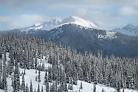 Frosty Mountain in winter, seen from Gibson Pass Ski Area. Manning Provincial Park. North Cascades British Columbia