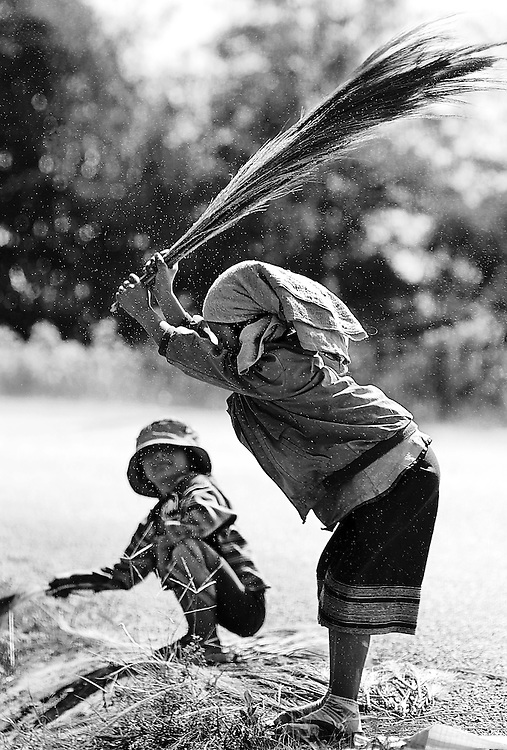 Children thrash the seeds out of the harvested grass to be made into brooms in northern Laos.