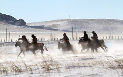 Herdsmen attend a horse culture festival which is part of a winter carnival in West Ujimqin Banner, north China's Inner Mongolia Autonomous Region, January 4, 2013. Photo by Imago / i-Images...UK ONLY