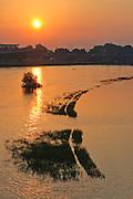 Sonnenuntergang Elbe mit Marienbrücke, Dresden, Sachsen, Deutschland.|.sunset on river Elbe, Dresden, Germany