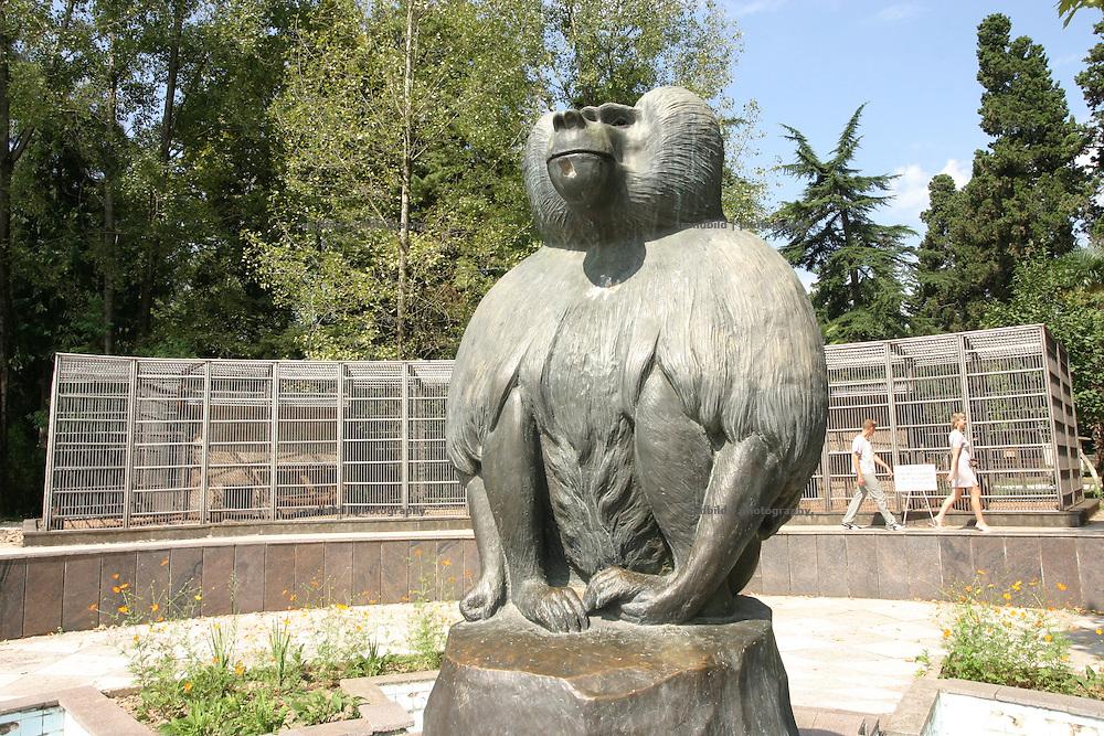 Georgien/Abchasien, Suchumi, 2006-08-25, Das Affeninstitut in Suchumi war in der Sowjetzeit ein grosses Forschungsinstitut. Hier wurde u.a. am Rhesusaffen geforscht. Im Krieg wurde das Institut stark beschädigt und viele Tiere befreiten sich. Heute sind die verbliebenen Affen eine Touristenattraktion. Abchasien erklärte sich 1992 unabhängig von Georgien. Nach einem einjährigen blutigen Krieg zwischen den Abchasen und Georgiern besteht seit 1994 ein brüchiger Waffenstillstand, der von einer UNO-Beobachtermission unter personeller Beteiligung Deutschlands überwacht wird. Trotzdem gibt es, vor allem im Kodorital immer wieder bewaffnete Auseinandersetzungen zwischen den Armee der Länder sowie irregulären Kämpfern. (The Monkey institut of Suchumi was a famous institution of science. The Rhesus monkey was one of the main tasks. DUring the war the institut became badly damaged and many apes fleed. Today the residual monkeys become a attraction for tourists. Abkhazia declared itself independent from Georgia in 1992. After a bloody civil war a UNO mission observing the ceasefire line between Georgia and Abkhazia since 1994. Nevertheless nearly every day armed incidents take place in the Kodori gorge between the both armys and unregular fighters)