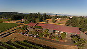 Aerial view over Bethel Heights vineayrd and winery, Eola Hills, Willamette Valley, Oregon