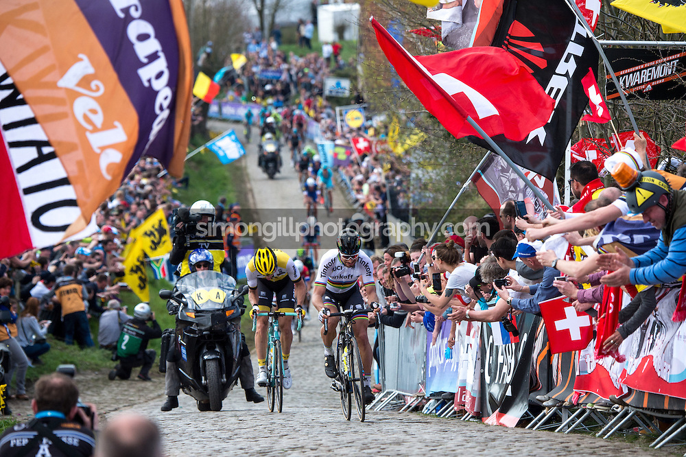 2016 Tour of Flanders April 3rd. Peter Sagan of (Tinkoff) leads the race up the final ascent of the Paterberg during the 100th edition of the Tour of Flanders from Bruges to Oudenaarde.