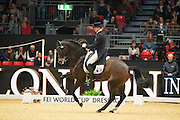 Ludic Henry - After You<br /> Olympia Horse Show 2016<br /> © DigiShots