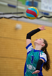 31-03-2019 NED: Final D Volleybaldirect Open, Wognum<br /> 16 teams of girls and boys D competed for the Dutch Open Championship / Flamingo's '56vs. Dros-Alterno