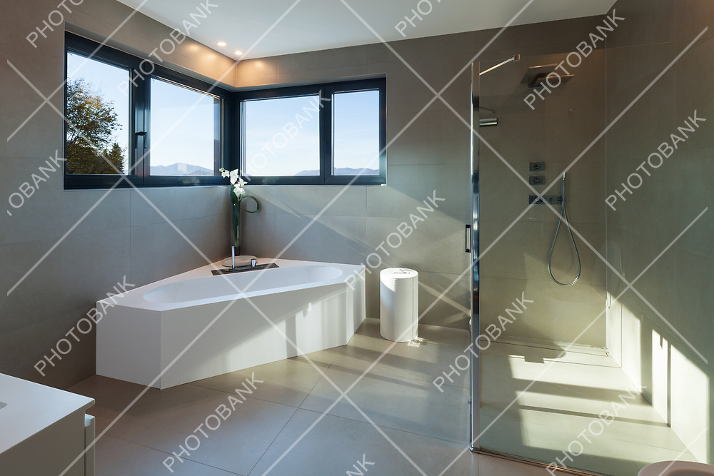 Interior, bathroom of a modern house