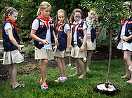 9 JUNE 2012 -- COTTLEVILLE, Mo. -- With a trowel of soil members of American Heritage Girls Troop 1776 dedicate a cherry tree planted on the grounds of St. Joseph Church during their year-end meeting at the parish in Cottleville, Mo. Saturday, June 9, 2012. Photo © copyright 2012 Sid Hastings.