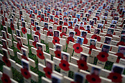 © Licensed to London News Pictures. 08/11/2012. Westminster, UK Crosses bearing the portraits of British military personnel  killed in recent action in Afghanistan. People look at the Royal British Legion Field of Remembrance at Westminster Abbey today 8th November 2012.  Thousands of crosses with poppies attached are planted every year to remember Britain's war dead. Photo credit : Stephen Simpson/LNP