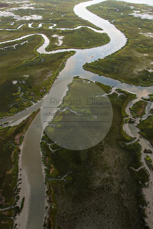 Salt marsh in Mount Pleasant, SC.