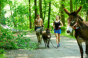 Peach Bottom, Pennsylvania - May 17, 2017: Donkey runners (L-R) Chris McDougall, Ruby Rublesky, and Don Korenkiewicz (out of frame) run with Sherman, Matilda, and Flower, respectively, among the Amish farms in rural Pennsylvania Wednesday may 17, 2017.<br /> <br /> CREDIT: Matt Roth for The New York Times<br /> Assignment ID: 30206505A