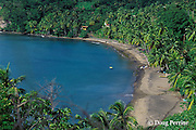 fishermen pull boat onto beach on northwest coast of Dominica ( Eastern Caribbean )