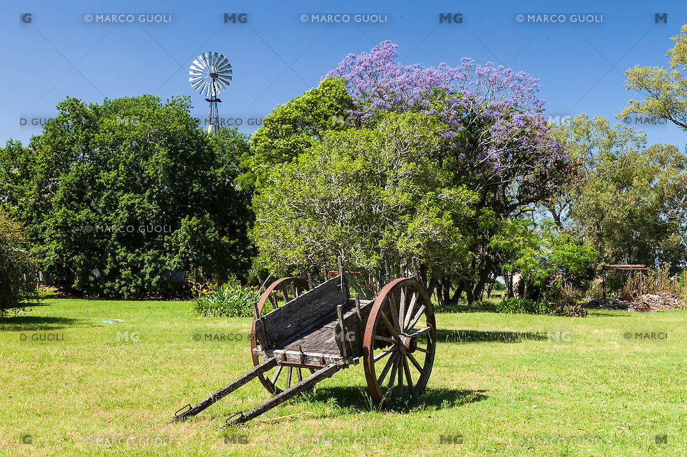 ESTANCIA EN LOS ALREDEDORES DE GUALEGUAY, PROVINCIA DE ENTRE RIOS, ARGENTINA (PHOTO © MARCO GUOLI - ALL RIGHTS RESERVED)