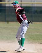 Indiana Elite Boys Junior 3A Baseball