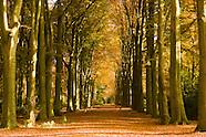 landgoed Blijendijk