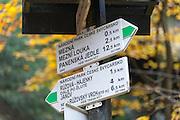Wanderwegweiser in der Kamnitzklamm, Hrensko, Böhmische Schweiz, Elbsandsteingebirge, Böhmen, Tschechische Republik | hiking trail signs in Kamnitz Gorge, Hrensko, Bohemian Switzerland, Elbe Sandstone Mountains, Bohemia, Czech Republic