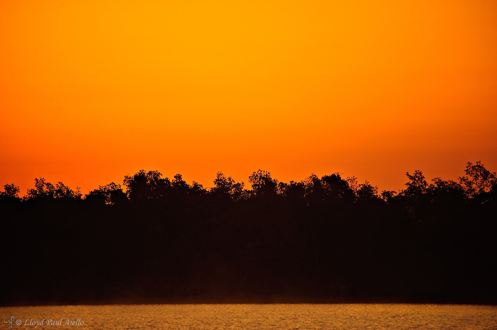 The eastern sky glows orange before sunrise at Plate Creek Bay, Everglades, Florida