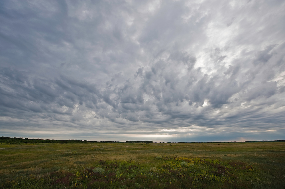 Landscape with stormy clouds, Hortobagy National Park, Hungary