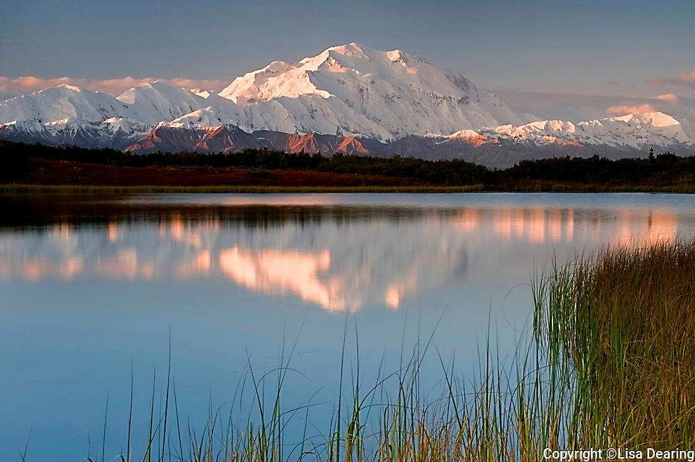 Mount Mckinley from Reflection Pond, Denali National Park, Alaska