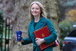 © Licensed to London News Pictures. 12/02/2019. London, UK. Liz Truss - Chief Secretary to the Treasury arrives in Downing Street for the weekly Cabinet meeting. Photo credit: Dinendra Haria/LNP