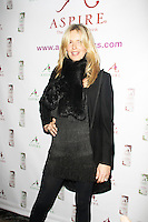Penny Lancaster, Aspire Drinks - Press Launch, Sanctum Soho Hotel - Roof Garden, London UK, 12 December 2013, Photo by Brett D. Cove