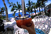Image of a woman drinking iced tea in an outdoor restaurant overlooking the Sea of Cotez near Cabo San Lucas, Baja California Sur, Mexico, model released