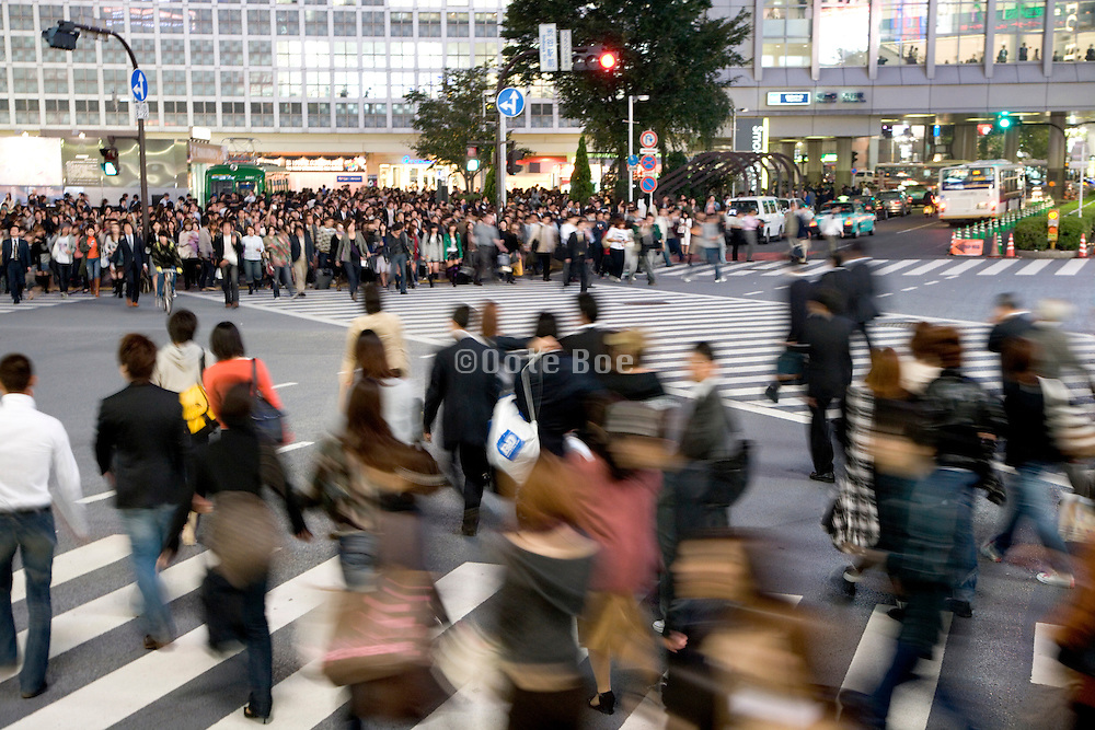 evening commuters crossing the Hachiko square zebra crossing at Shibuya station in Tokyo Japan
