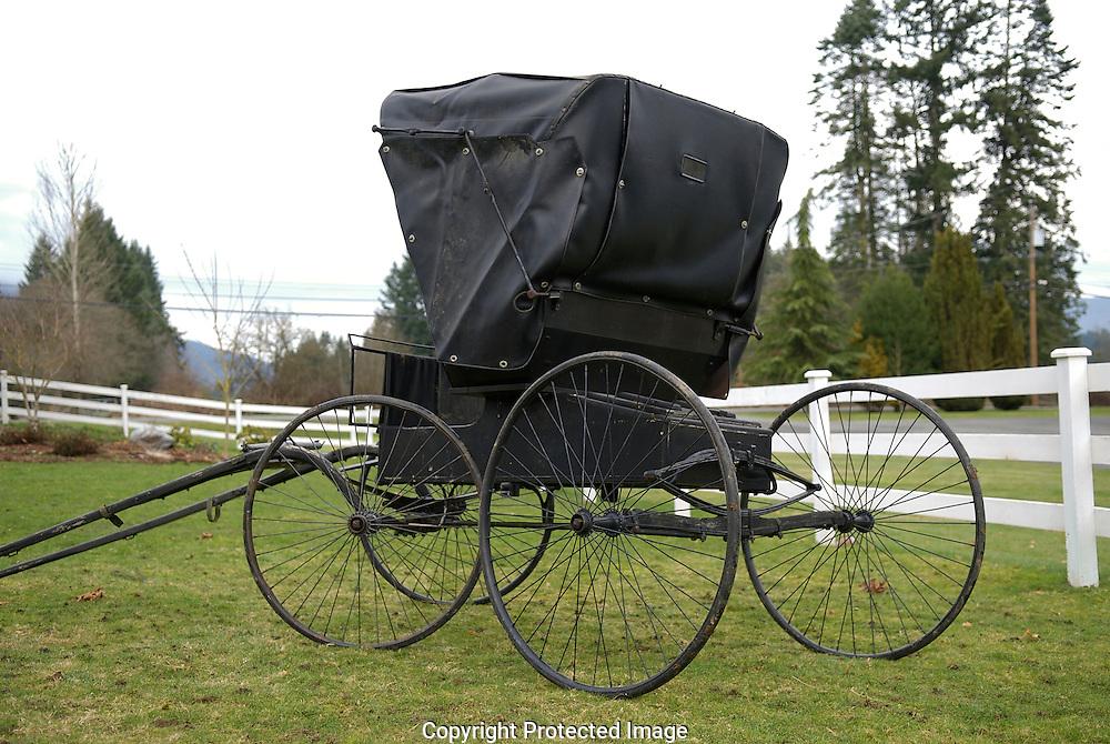 antique doctors buggy