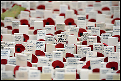 Service personnel place remembrance crosses outside Westminster Abbey ahead of the official opening of the Royal British Legion's Field of Remembrance, Westminster Abbey, London, United Kingdom. Thursday, 7th November 2013. Picture by Andrew Parsons / i-Images