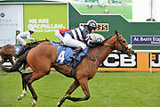 MISTER BELVEDERE (4) ridden by Miss Sophie Dodds and trained by her father Michael Dods winning The Queen Mothers Cup (for Lady Amateur Riders) over 1m 4f (£20,000) during the Macmillan Charity Raceday at York Racecourse, York, United Kingdom on 16 June 2018. Picture by Mick Atkins.
