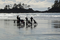 Chesterman Beach, near Tofino, BC Canada, approximately 3 kilometers of white sand and provides a great walk for moms and babies.