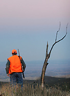 Photo by Barton Glasser.Hunting near Montrose, Colo.