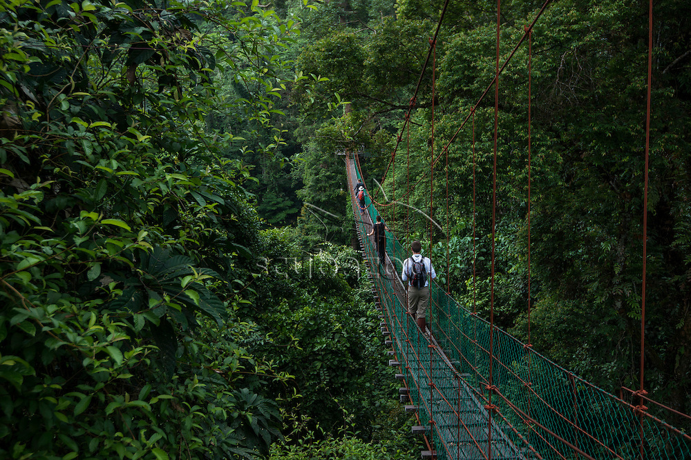 Tourists walking on a canopy walkway over the rainforest, Danum Valley, Sabah, Malaysia.