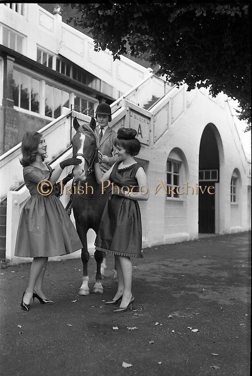 07/08/1962 <br /> 08/07/1962 <br /> 07 August 1962 <br /> Bradmola Nylons fashion stand at the Dublin Horse show at the RDS, Ballsbridge, Dublin, Tuesday.