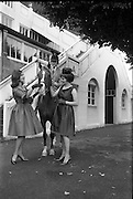 07/08/1962 <br /> 08/07/1962 <br /> 07 August 1962 <br /> Bradmola Nylons fashion stand at the Dublin Horse show at the RDS, Ballsbridge, Dublin, Tuesday.