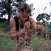 Mary Thorp collecting seeds from Bromus interruptus grass Kew UK