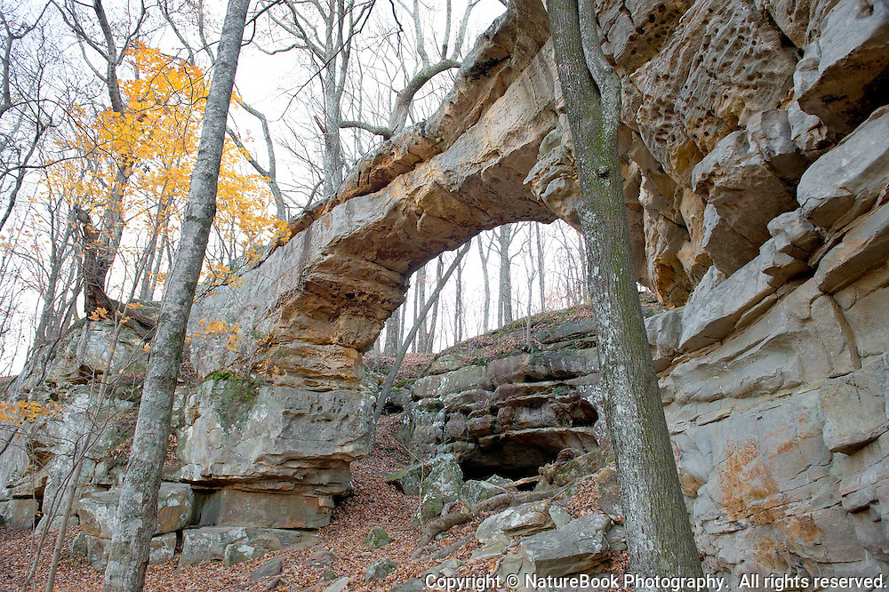 Natural bridge in middle Tennessee in late fall.