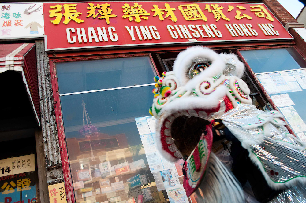 A lion dancer makes the rounds to local businesses to collect donations, a custom during Chinese New Year. Chinatown, Chicago, 2010