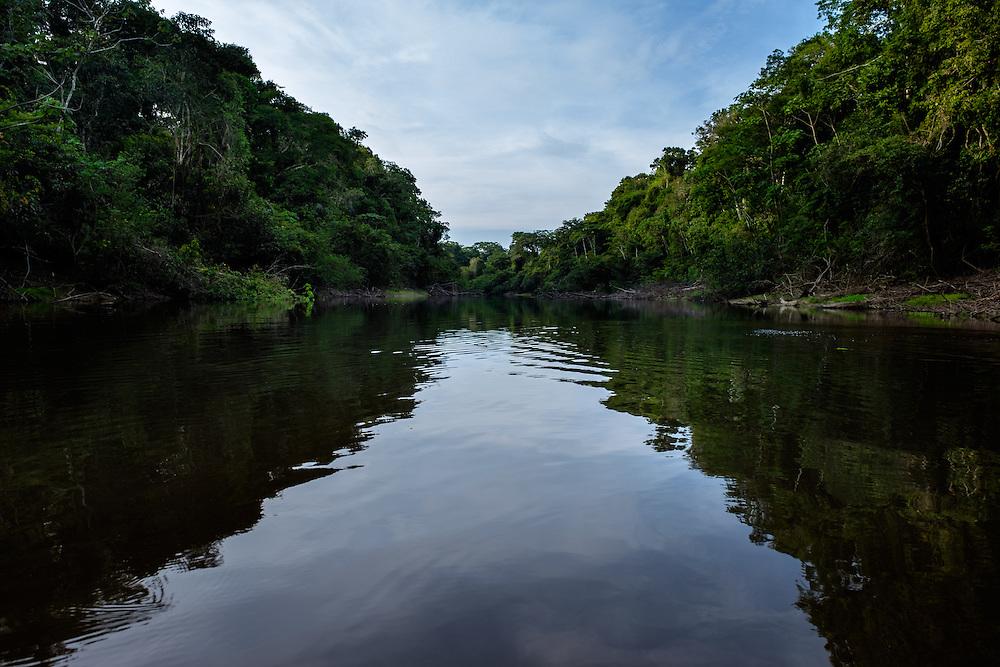 LORETO, PERU - CIRCA OCTOBER 2015: Shallow waterway in the Peruvian Amazon.