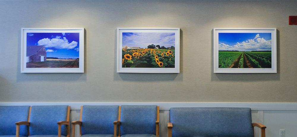 Jake Rajs Prints in Peconic Bay Medical Center, Riverhead, New York, Waiting Room