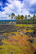 Heiau (temple), Pu'uhonua O Honaunau National Historic Park (City of Refuge), Kona Coast, Hawaii USA